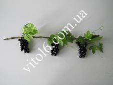 Лоза виноградн.черный  виноградVT6-13958(150шт)