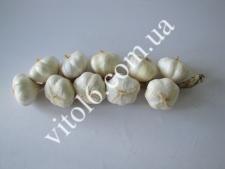 Вязка чеснока гиганта  VT6-15245 (150шт)