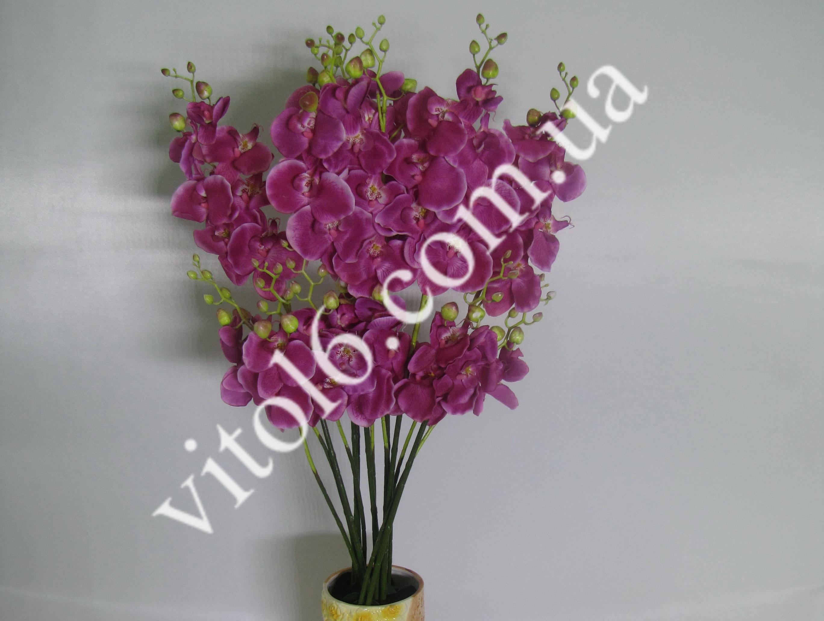 Ветка искусств.Орхидея с корнями(4)VTD-213(240)